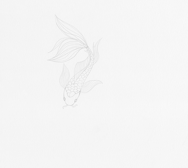 Comment dessiner l'illustration du poisson Koi