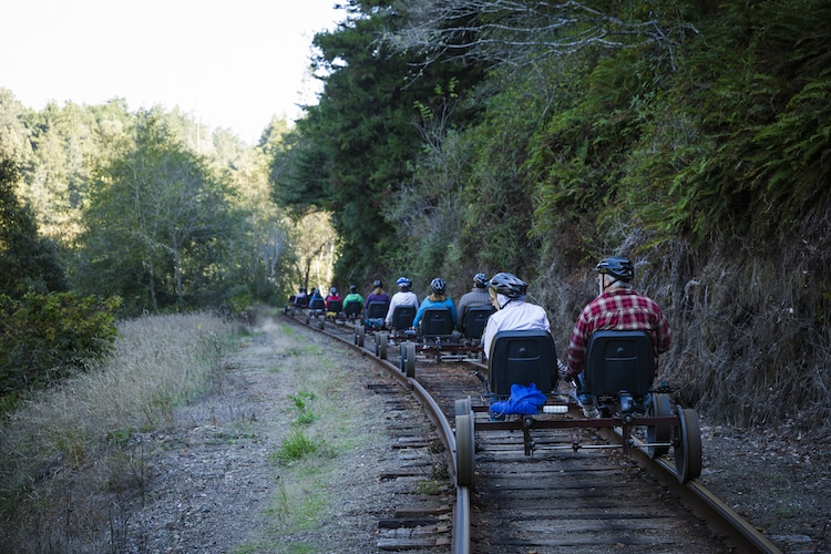 Vélos sur rail Redwood Forest