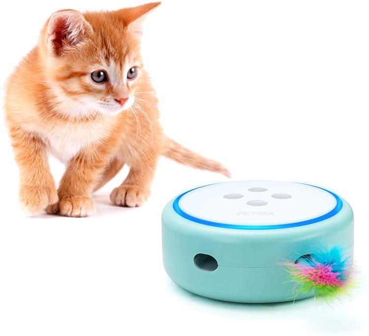 Jouet électronique Feather Pop and Play pour chat